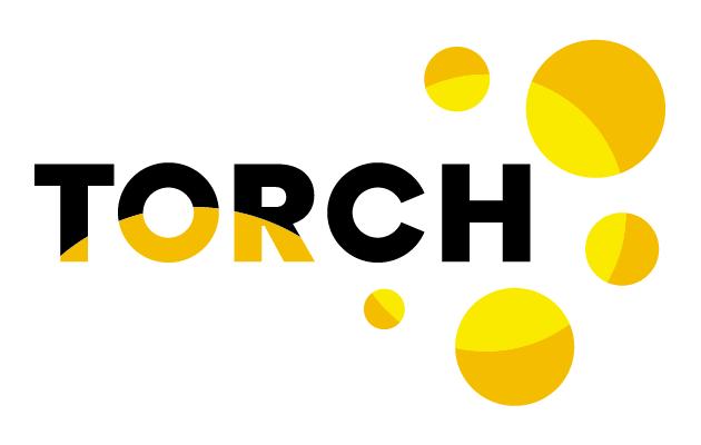 Torch service