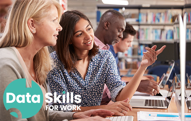 Data skills for work logo plus people learning at computer