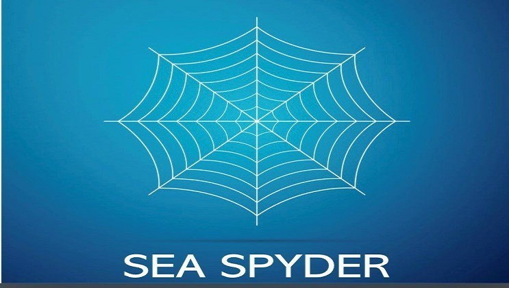 sea spyder logo-whisky market solutions