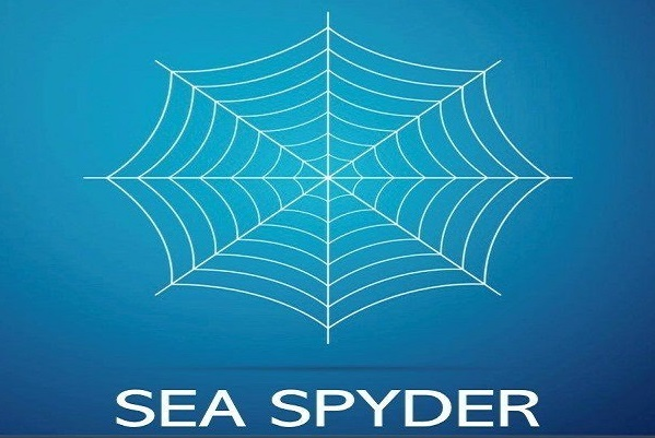 seaspyder-logo-whisky-market-solutions